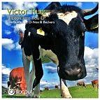Victor Ruiz-I Look Into You (D-Nox &  Beckers Mix) [myfreemp3.eu].mp3